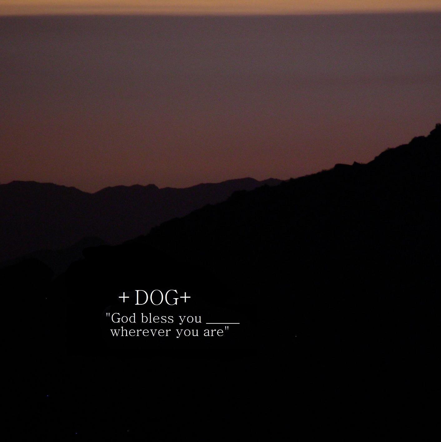 +DOG+